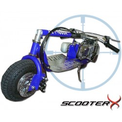 ScooterX Dirt Dog